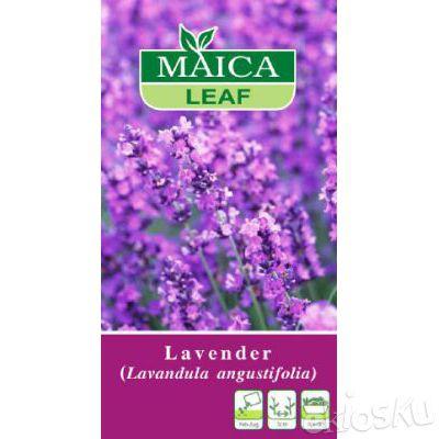 1 pcs benih bunga lavender