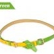 Korean fashion two candy color matching thin belt (Green)